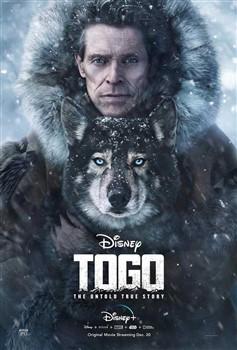 Chú Chó Togo